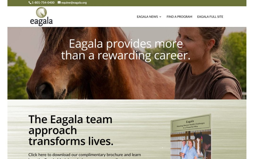 Complimentary Eagala Information Brochure on this enews Page